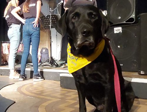 Billi attends 'Never Mind' event at Wycombe Arts Centre.